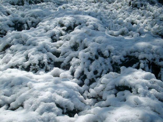 March snow1