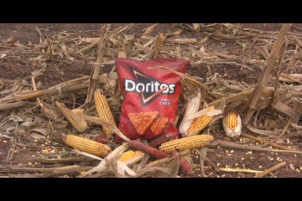 Doritos still